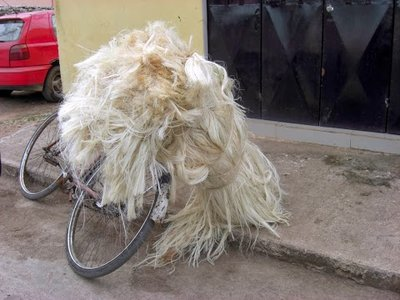 henequen that has been processed into sisal