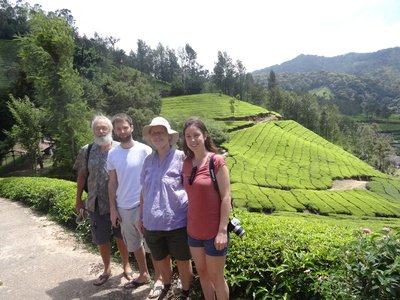 The four of us at a tea plantation