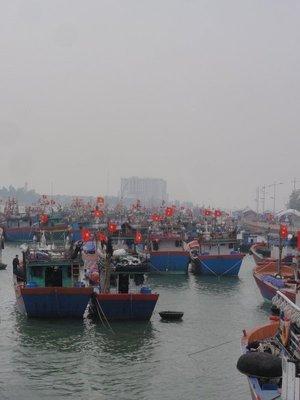 Fishing fleet flying the flag