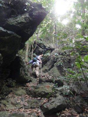 Jumble of rocks