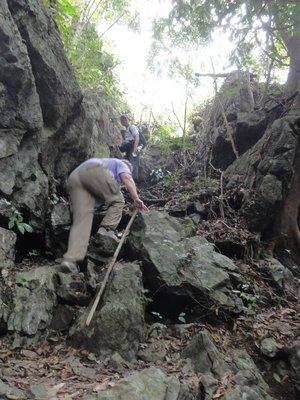 Working hard to climb