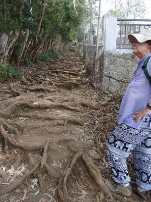 Part of the steep path up to the village - how do you like my elephant pants?