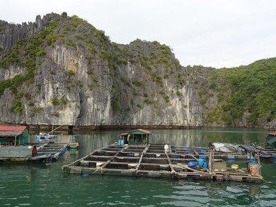 Part of floating village