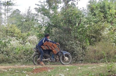Transporting wood in the village