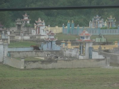 A glimpse of a cemetery