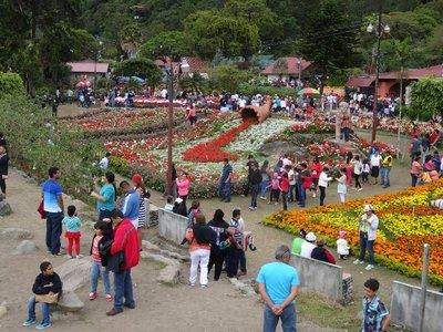 Crowds at the fair