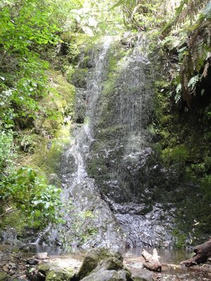 Fairy-like Waterfall