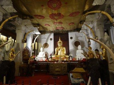 Inside the Shrine Room