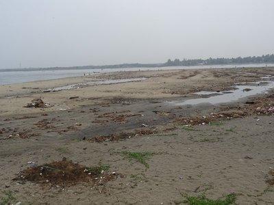Garbage strewn shore