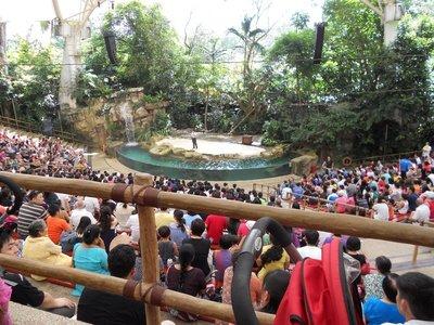 Animal Show Theatre