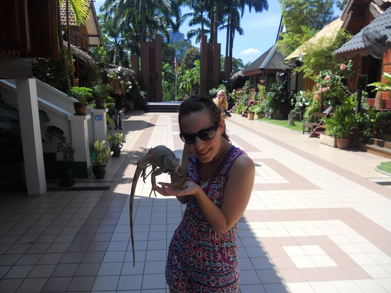 My iguana friend