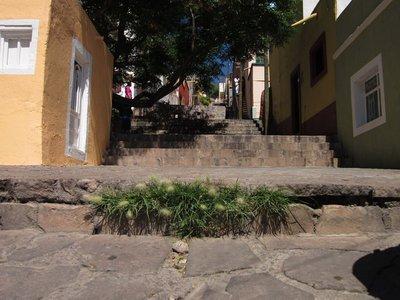 Zacatecas_009.jpg