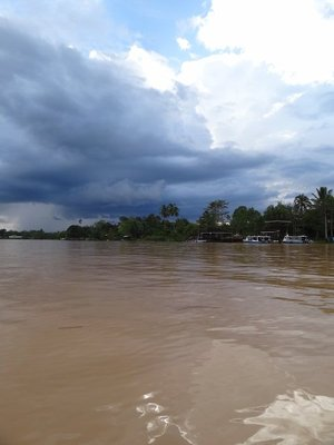 The big dirty brown Kinabatangan River. Apparently it was never this colour before logging started.
