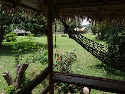 The view from my bungalow porch where I'm currently staying.