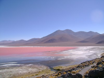 lagona colorado