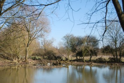 Lake (118 of 156)