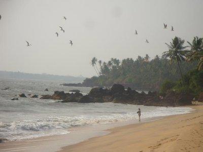 Thottada Beach/ Kannore Beach House