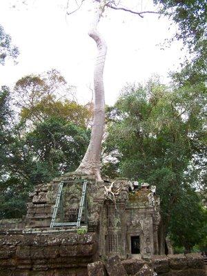 Angkor-0084.jpg