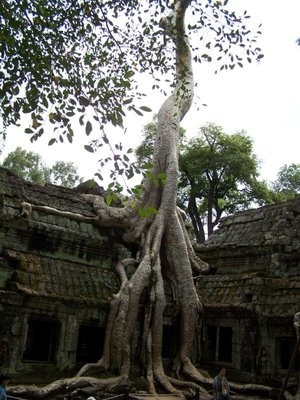 Angkor-0110.jpg