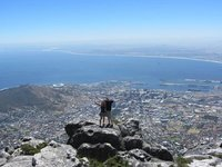 On top of the world...or Capetown at least!
