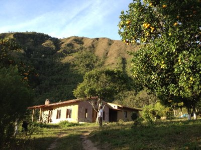 Walking in the hills of Samaipata and stealing fruit...