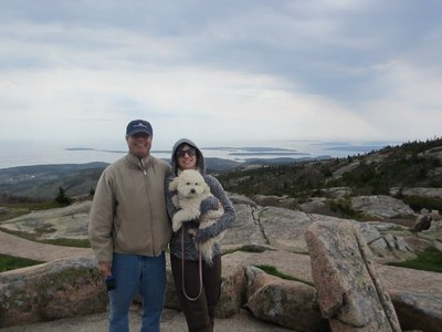at the top of cadillac mountain with dad and izzy