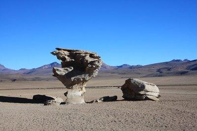 Los Arboles de Piedra (Rock Trees)