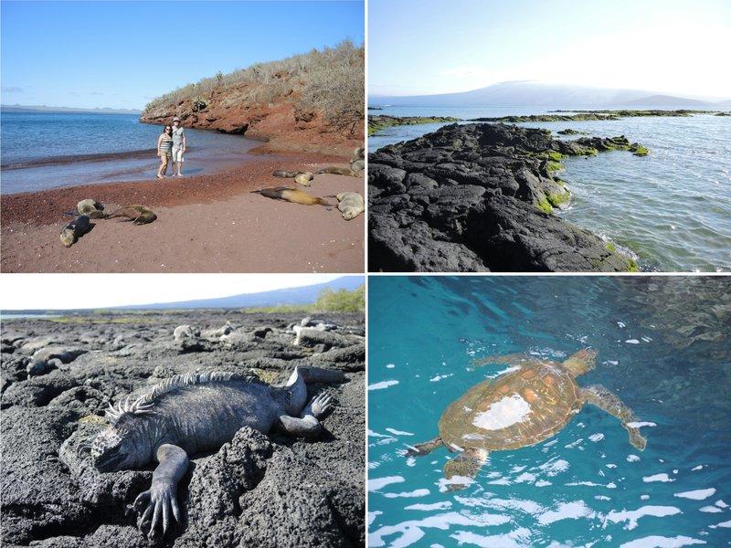 large_Galapagos2.jpg