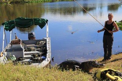 Fishing for Piranhas next to the alligator...