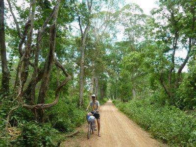 Fahrradtour durch den Dschungel