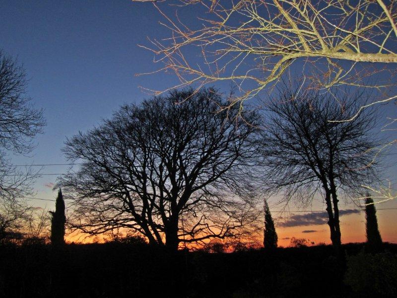 Hastingleigh dusk