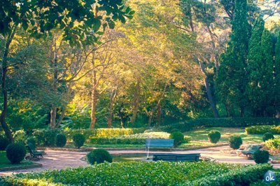 Romantic Garden D&#39;Horta