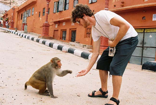 Feeding a monkey at The Monkey Temple, Jaipur, India