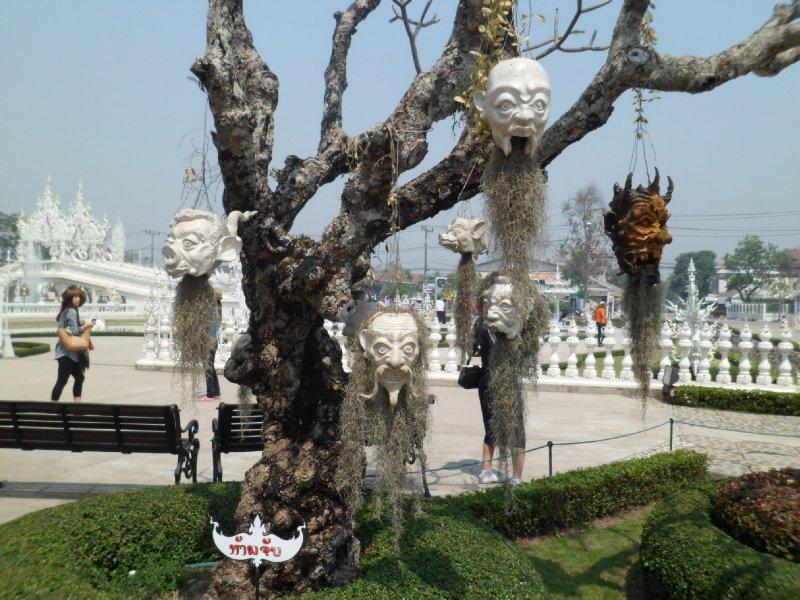 White temple skulls