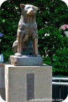 hachiko_statue.jpg