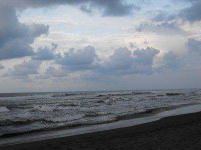 Tortuguero beach