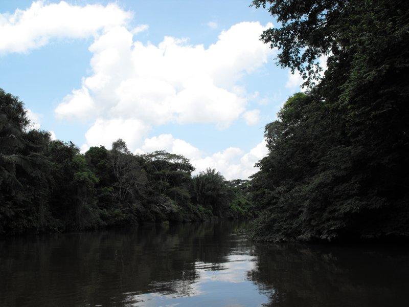 Cano Negro