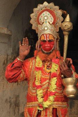 Monkey Sadhu