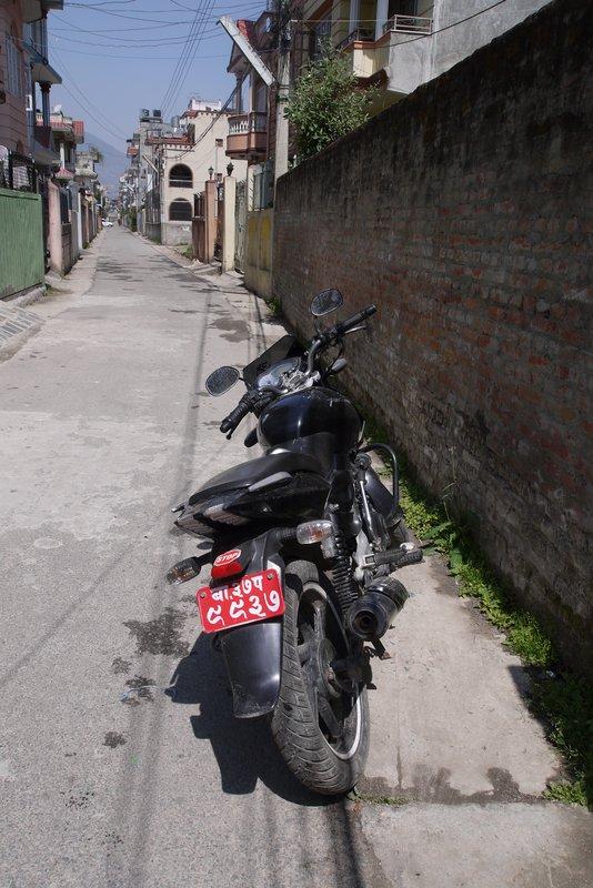 large_P1210377.jpg