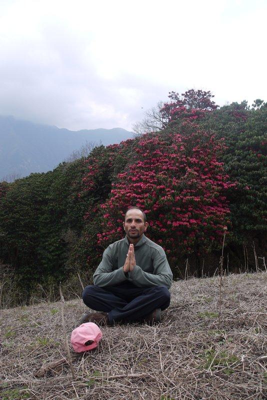 large_Yoga.jpg