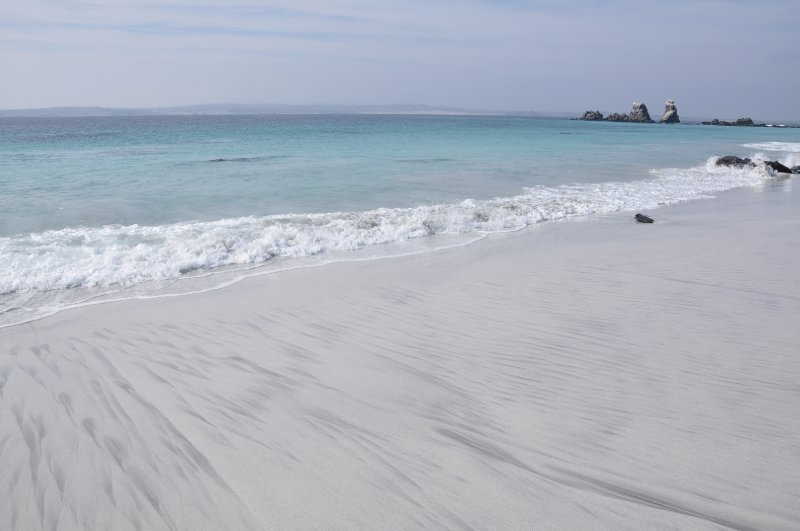 Reserva Nacional de los Penguinos Humboldt (Isla Damas)
