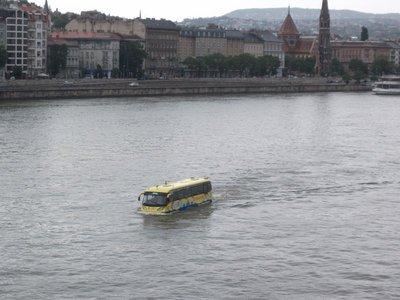 river_bus.jpg