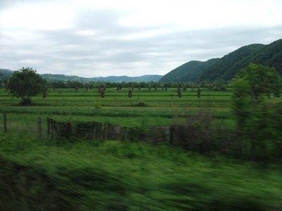 train_to_cluj.jpg