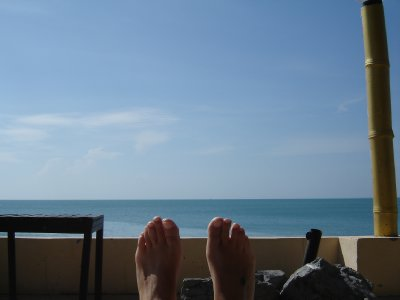 Above: Teresa's view from her sun lounger.