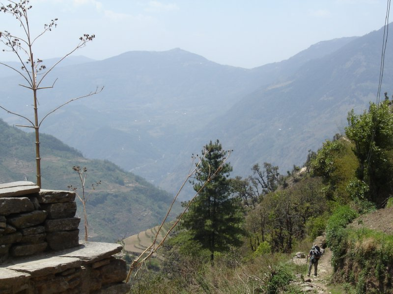 Above: Looking back towards Bhandar. Deurali is the dip on the ridge in the background.