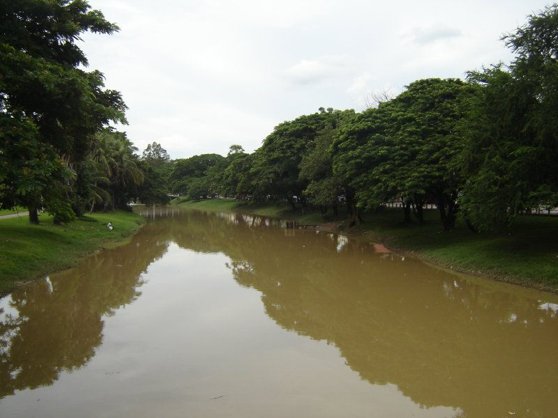 Above: The tree-lined Siem Reap river which runs through the city.