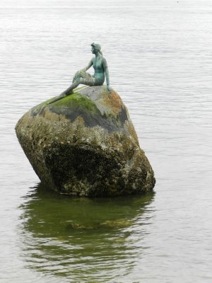 Stanley Park: Girl in a Wetsuit