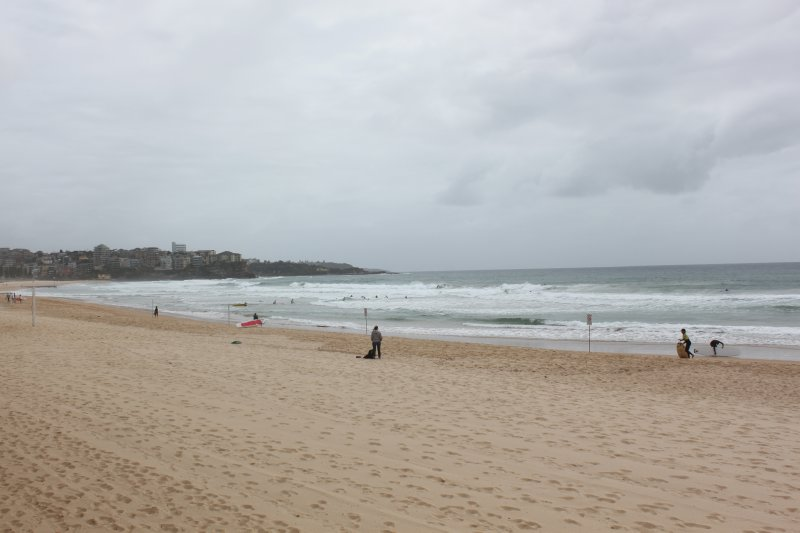 large_Manly_Beach.jpg