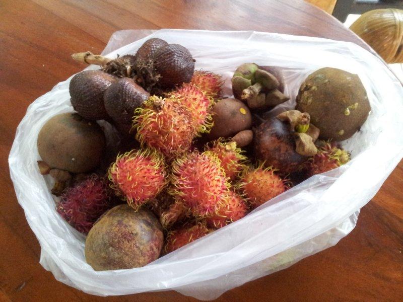 large_fruit.jpg