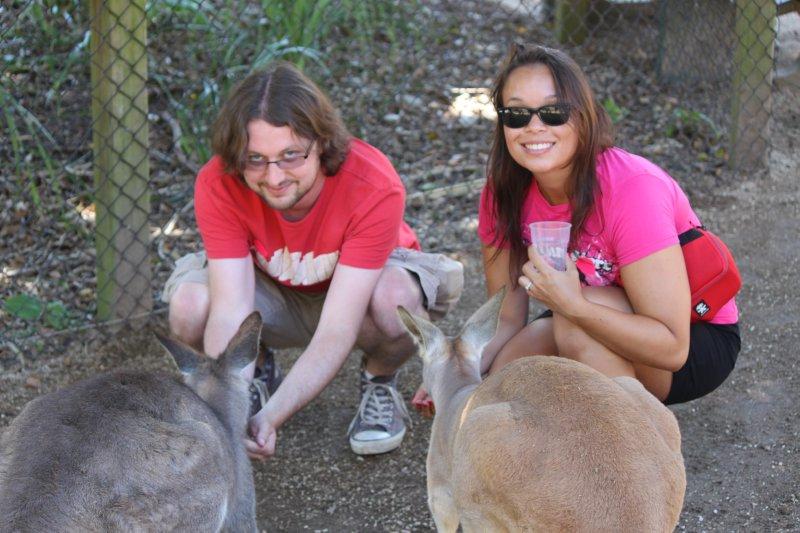large_jen_tony_feeding_kangaroo.jpg